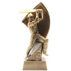 RS5 - Cricket Batsman Resin