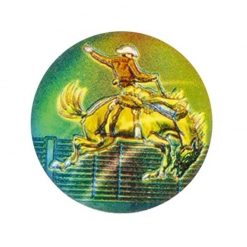 Horse Rodeo - Holographic Mylar 50mm