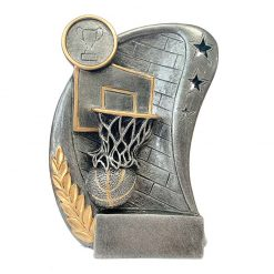 PG2 - Basketball Pewter Generic Resin