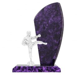Martial Arts Male Figure Silver Timber Award Purple Marble