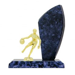 Basketball Double Gold Figure Male Timber Award Blue Marble